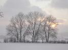 Schneegestöber in Niederhersdorf